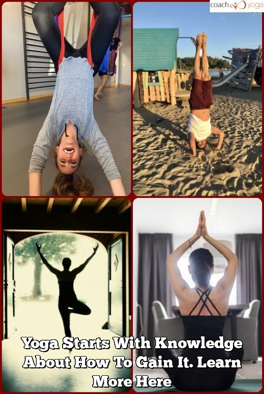 yoga starts with knowledge about how to gain it. learn more here