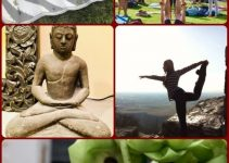 What is Yoga Good For?